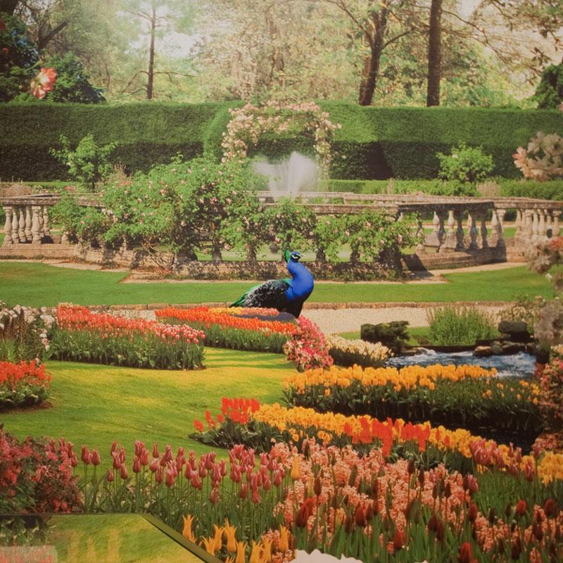 Glaziou e os Jardins Sinuosos